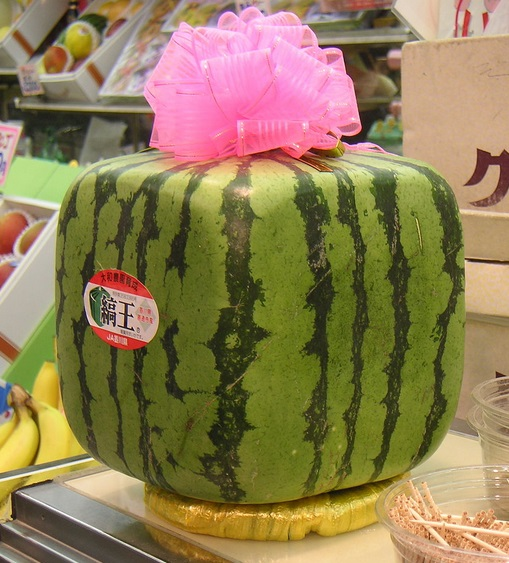 Square Watermelons And Apples Heart Or: AN INSIDE LOOK AT JAPAN'S LEGENDARY $200 SQUARE WATERMELON