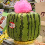 SECOND SLICE: AN INSIDE LOOK AT JAPAN'S LEGENDARY $200 SQUARE WATERMELON