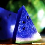 ASK THE EXPERTS: THE MYSTERIOUS BLUE WATERMELON