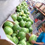 APRIL/MAY POLL: WHEN DO YOU PURCHASE YOUR WATERMELON?