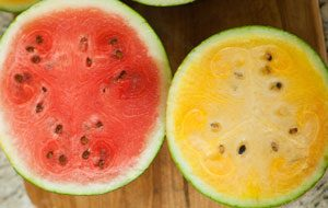 watermelon-size-difference-red-yellow