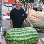 world-heaviest-watermelon