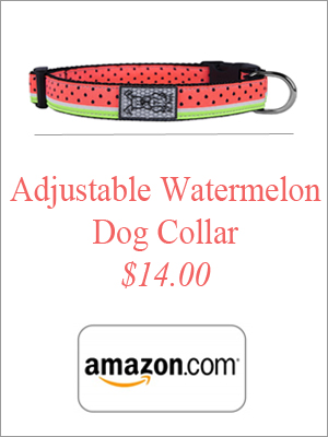 adjustable-watermelon-dog-collar