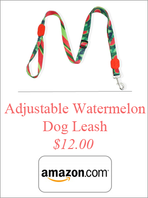 adjustable-watermelon-dog-leash