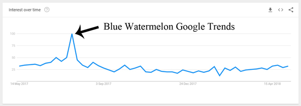 blue-watermelon-google-trends