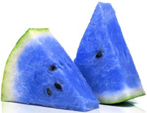 moonmelon-hoax