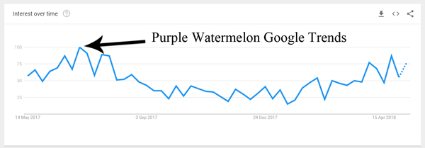 purple-watermelon-google-trends