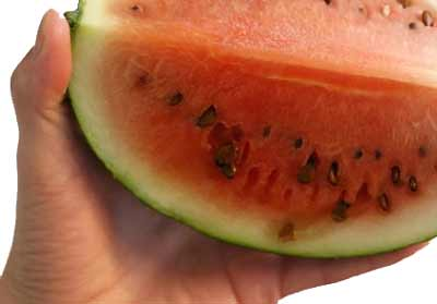 "bad-watermelon ""width ="" 400 ""height ="" 279 ""srcset ="" https://www.whataboutwatermelon.com/wp-content/uploads/2018/06/bad-watermelon.jpg 400w, https: // www. whataboutwatermelon.com/wp-content/uploads/2018/06/bad-watermelon-300x209.jpg 300w ""="" (largeur maximale: 400px) 100vw, 400px ""/></p> <p><!-- watermelon-resp-auto-size-1 --></p> <h2><span id="