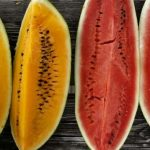 Yellow Watermelon vs Red Watermelon