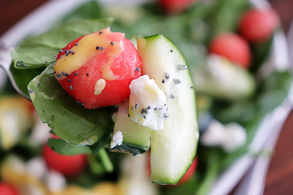 bite shot of Watermelon and Goat Cheese Salad Recipe